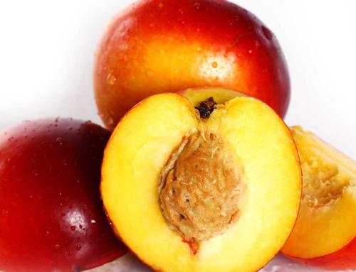 Odorizante personalizate aroma peach